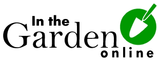 Gardening tips and advice for beginners